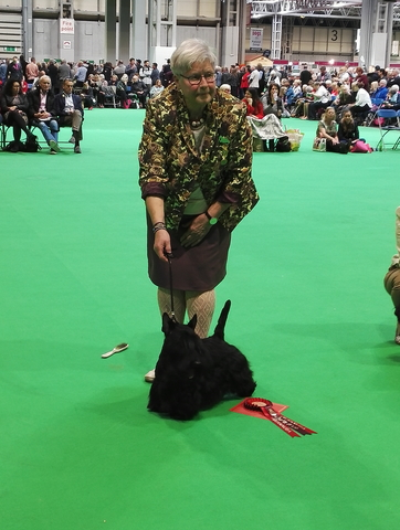 Marland Ultimate Junior Winner Crufts 2019